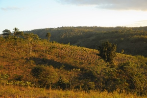 The hills of Belle Vie La Gonave haiti